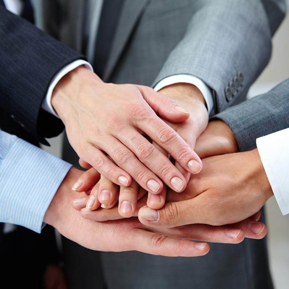 Distribución y Alianzas